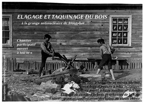 Chantier elagage